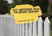 Best Landscaping Ideas For Hillside Backyard